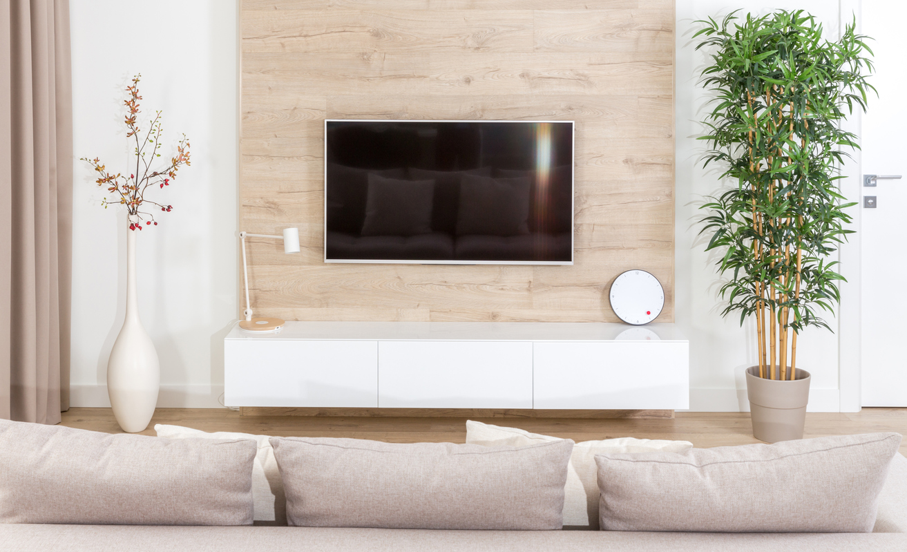 Modern light living room with wall mounted tv equipment